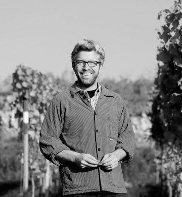 Egon Schmitt tysk rødvin smagekasse